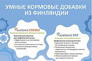 Разработаю рекламный макет для журнала, газеты 34 - kwork.ru