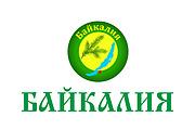 Отрисовка в векторе, формат Coreldraw, по рисунку, фото, сканированию 121 - kwork.ru