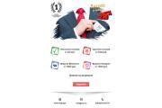 Дизайн и верстка адаптивного html письма для e-mail рассылки 118 - kwork.ru