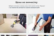 Создание сайта - Landing Page на Тильде 216 - kwork.ru
