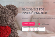Делаю копии landing page 125 - kwork.ru