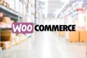 50 премиум тем WP для интернет-магазина на WooCommerce 59 - kwork.ru