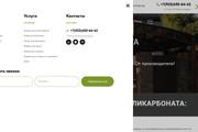 Сделаю классный Лендинг на Elementor Pro 70 - kwork.ru