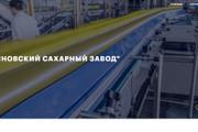 Скопирую почти любой сайт, landing page под ключ с админ панелью 95 - kwork.ru