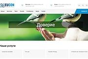 Натяну верстку на движок 11 - kwork.ru