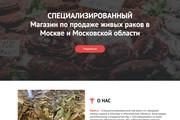 Сайт под ключ. Landing Page. Backend 362 - kwork.ru