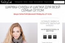 Сделаю продающий Лендинг для Вашего бизнеса 188 - kwork.ru