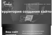 Сайт на wordpress + бонус премиум тема, шаблон, landing page 6 - kwork.ru