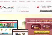 Качественная копия лендинга с установкой панели редактора 142 - kwork.ru