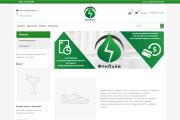 Профессионально создам интернет-магазин на insales + 20 дней бесплатно 84 - kwork.ru