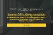 Стильный дизайн презентации 507 - kwork.ru