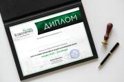 Дизайн двухсторонней листовки с исходниками 76 - kwork.ru