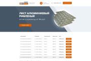 Дизайн страницы Landing Page - Профессионально 114 - kwork.ru