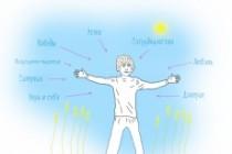 Быстро нарисую веселые иллюстрации 115 - kwork.ru