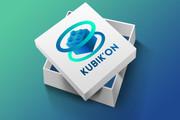 Уникальный логотип в нескольких вариантах + исходники в подарок 292 - kwork.ru