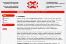 Создам сайт-визитку недорого 49 - kwork.ru