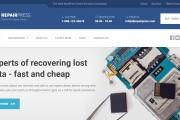 Тема RepairPress с плагинами для WordPress на русском с обновлениями 30 - kwork.ru