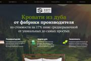 Делаю копии landing page 109 - kwork.ru
