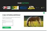 Сайт под ключ. Landing Page. Backend 416 - kwork.ru