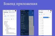 Создание мобильного приложения с сервером для вашего бизнеса 13 - kwork.ru