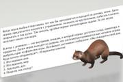 Сценарий для мобильной игры 18 - kwork.ru