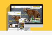 Создам сайт на WordPress с уникальным дизайном, не копия 48 - kwork.ru