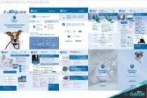 Разработаю маркетинг-кит компании - продающую презентацию 31 - kwork.ru