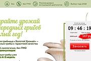 Скопирую Landing Page, Одностраничный сайт 181 - kwork.ru