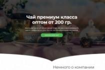 Продающий сайт - Лендинг под ключ, для любых целей 181 - kwork.ru