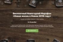 Продающий сайт - Лендинг под ключ, для любых целей 215 - kwork.ru