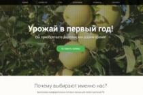 Продающий сайт - Лендинг под ключ, для любых целей 219 - kwork.ru