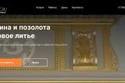 Создание сайтов на конструкторе сайтов WIX, nethouse 152 - kwork.ru