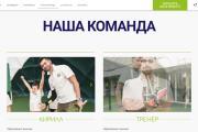 Лендинг для любых целей на Wordpress 105 - kwork.ru