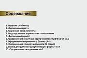 Разработка brand book 37 - kwork.ru