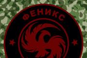Создание логотипа для компаний, страйк больных клубов, организаций 11 - kwork.ru