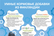 Разработаю рекламный макет для журнала, газеты 33 - kwork.ru
