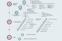 Инфографика любой сложности 88 - kwork.ru