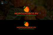 Создам качественный логотип, favicon в подарок 187 - kwork.ru