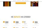 Лендинг для любых целей на Wordpress 163 - kwork.ru