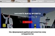 Создание сайта - Landing Page на Тильде 304 - kwork.ru