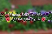 Создание сайтов под ключ на Тильда. Лендинги, одностраничные сайты 73 - kwork.ru