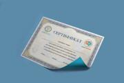 Сделаю сертификат 53 - kwork.ru