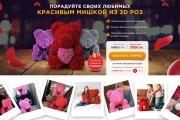 Копия сайта, landing page + админка и настройка форм на почту 163 - kwork.ru