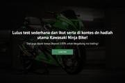 Сайт под ключ. Landing Page. Backend 330 - kwork.ru
