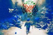Сделаю креативный баннер любых размеров 33 - kwork.ru