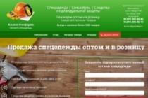 Продающий Landing Page под ключ 96 - kwork.ru