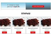 Создам лендинг на вордпресс быстро 62 - kwork.ru