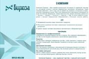 Разработка презентации 17 - kwork.ru