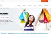 Тема Envision для WordPress на русском с обновлениями и плагинами 7 - kwork.ru