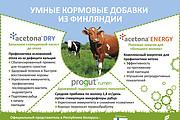 Разработаю рекламный макет для журнала, газеты 36 - kwork.ru